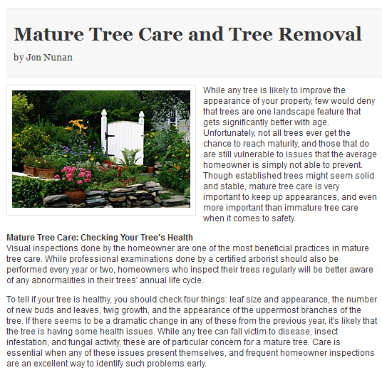 Colorado Tree Service Experts Highlight Importance of Care & Removal
